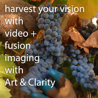 Art & Clarity Wedding Videos in Napa Valley California