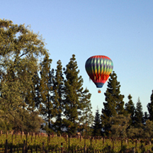 napa valley stock photography